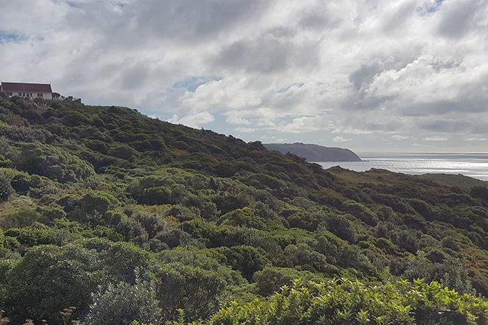 wellington newzealand