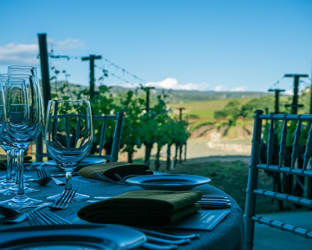 Wine and Vineyard Holidays in the USA with The co-operative travel, with travel agent Branches in Chelmsford and Braintree, Essex